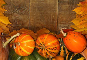 Autumn background with pumpkins №35234