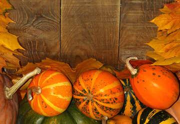 Herbst Hintergrund mit Kürbissen №35234