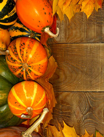 Autumn background with pumpkins №35235