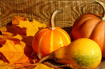 Wallpapers for desktop pumpkins and autumn leaves