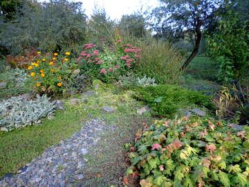 Flower garden №35892