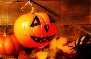 Halloween №35404