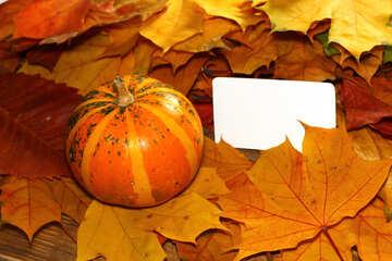 Autumn invitation for halloween №35184