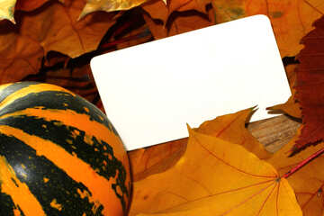 A blank invitation for halloween №35191