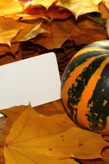Invitation for halloween №35192