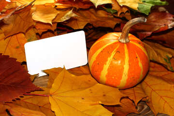 Invitation card for halloween №35193