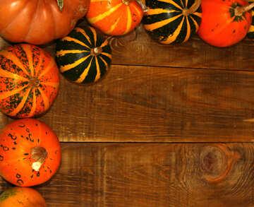 Autumn background with pumpkins №35212