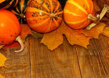 Autumn background with pumpkins №35220