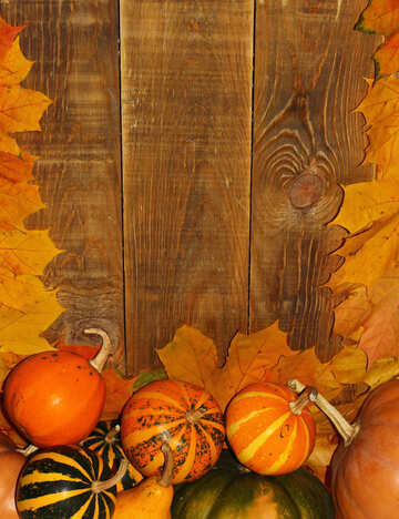 Autumn background with pumpkins №35227