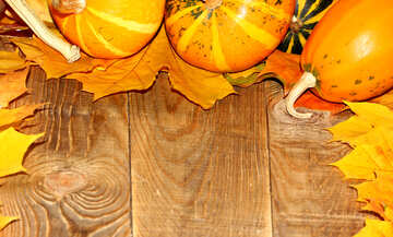Autumn background with pumpkins №35232