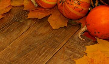 Herbst Hintergrund mit Kürbis auf Holzbrettern №35223