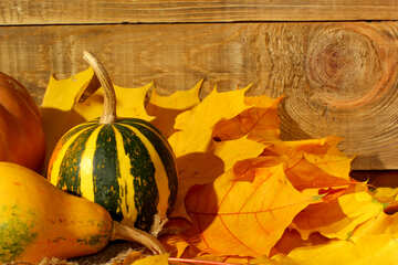 Background pumpkin on autumn leaves №35418