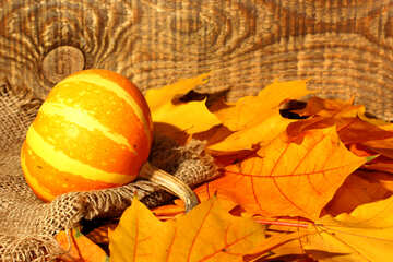 Autumn cover of Facebook with pumpkin