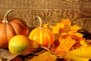 Decken Sie, Kürbis und Herbstlaub №35420