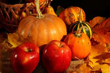 Fruta deliciosa otoño №35332