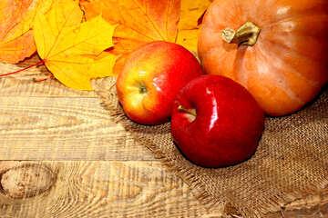 Autumn fruits №35158