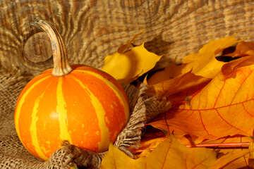 Calabaza en otoño hojas de tela sobre fondo de madera №35454