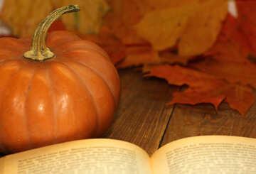 Autumn Prose №35176