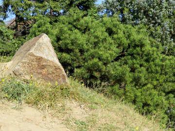 Ich bin Stein in Landschaftsplanung №35982