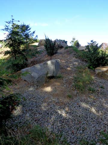 Stone Mountain №35882