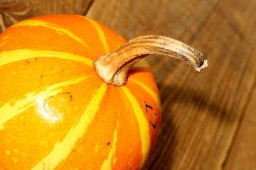 Pumpkin №35208