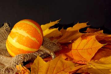 Pumpkin №35448