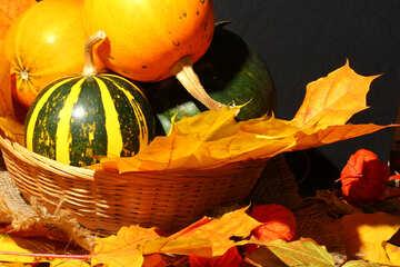 Pumpkins in basket №35361