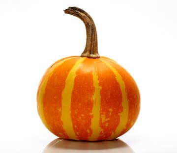 Beautiful pumpkin without background №35037
