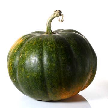 Green pumpkin with no background №35107