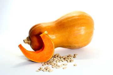 Isolation Reza pumpkin №35555
