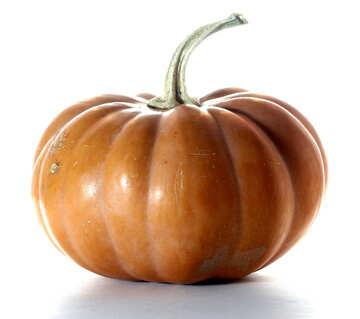Orange pumpkin on white background №35622