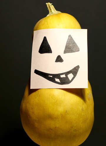 Funny pumpkin №35510