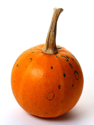 Decorative pumpkin №35029