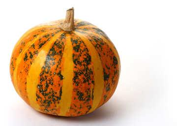 Little pumpkin №35023