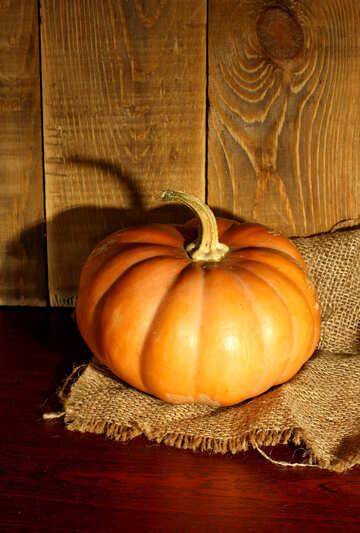 Juicy pumpkin №35381