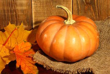 Orange pumpkin №35379