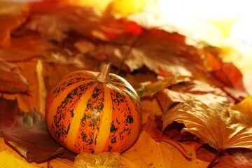 Orange pumpkin with strips №35270