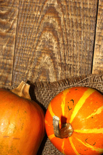 Picture with pumpkins for card №35171