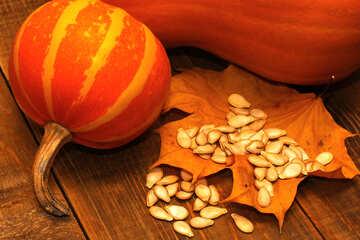 Pumpkin №35530
