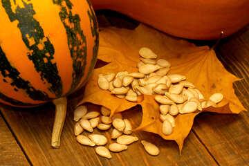 Pumpkin seeds №35532