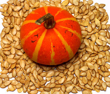 Pumpkin and sunflower seeds for background №35547