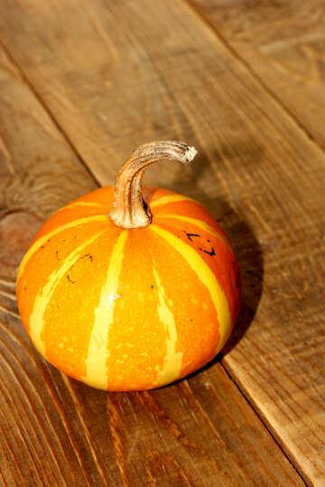 Pumpkin on the table №35207