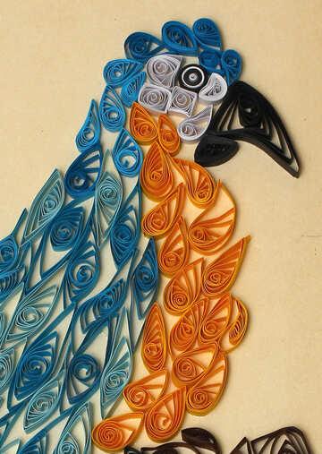 Parrot quilling №35488