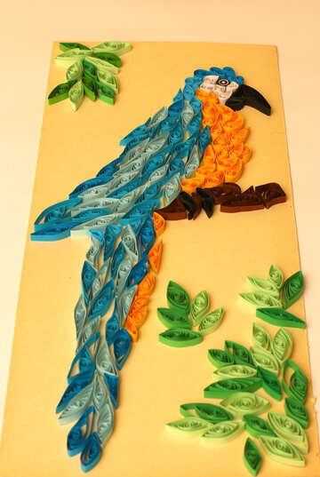 Picture with parrot quilling №35489
