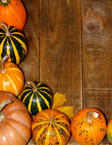 Autumn background with pumpkins №35214