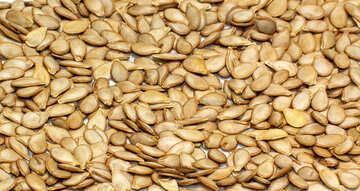 Texture of pumpkin seeds №35544