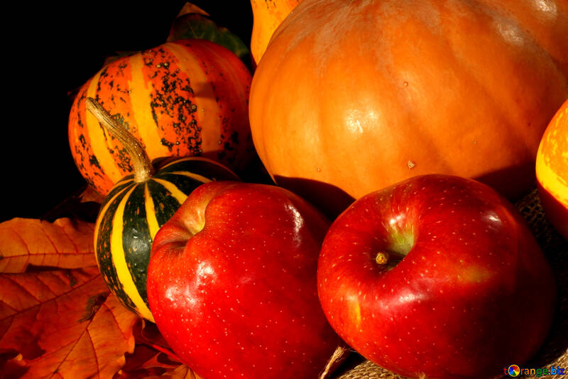 Apples and pumpkins in the fall №35328