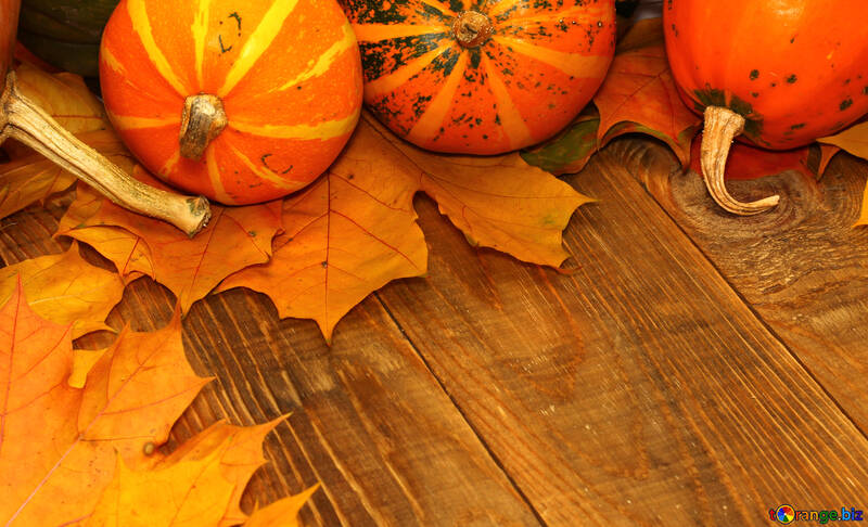 Autumn background with pumpkins on the table №35224