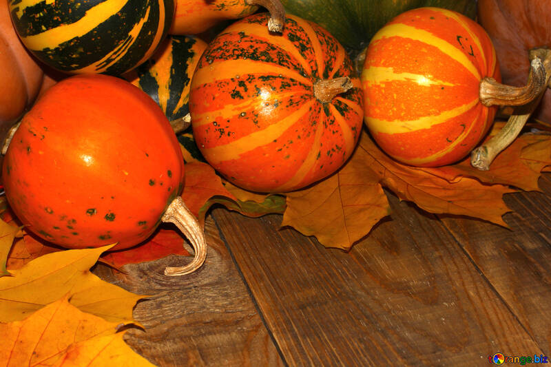 Autumn background with pumpkins №35226