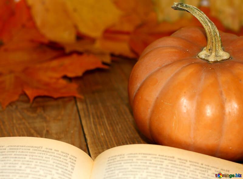 Book and pumpkin №35177